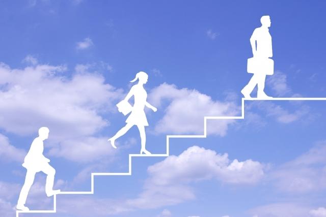 一般的な既卒の就職活動の流れ